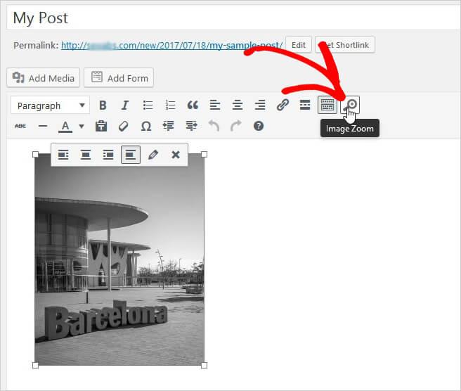 فعال کردن بزرگنمایی و زوم برای تصاویر در پست ها و صفحات
