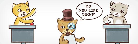 Quiz Cat